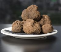 Click to enlarge image trufas.jpg